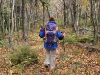 backpacking the catskill mountains