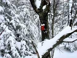 hiker injured on Sherrill Mountain on December 19, 2020