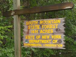 DEC strips forest of timber on South Mountain and Pisgah Mountain