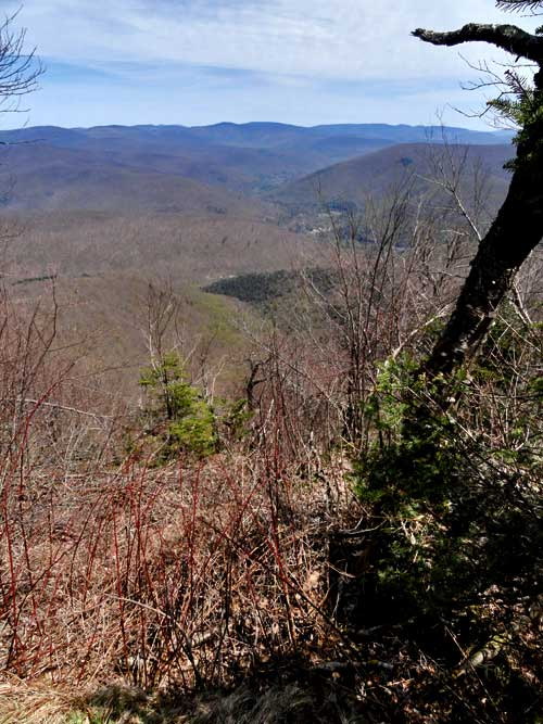 Forum View Topic Balsam Mountain